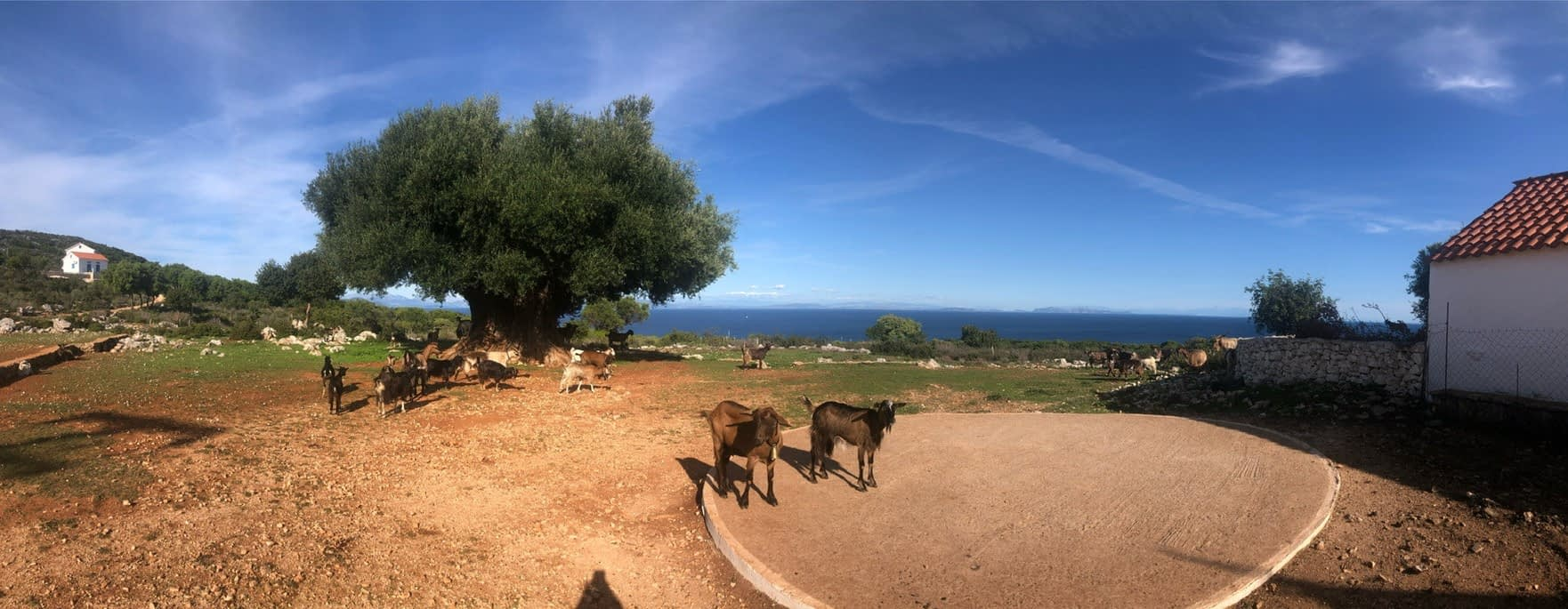 Landscape view of Ag Sophia in Ithaca Greece