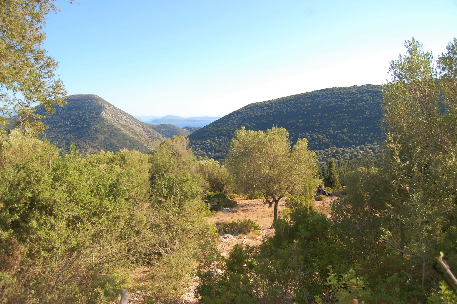 Terraced landscape of land for sale in Ithaca Greece, Stavros