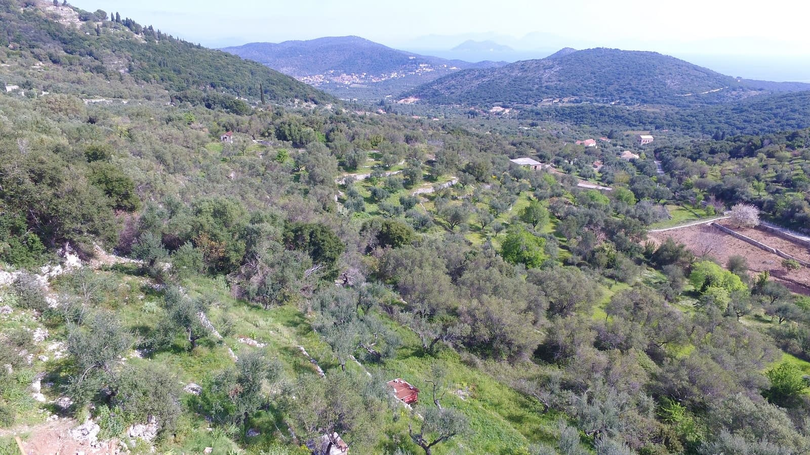Aerial view of land with license for sale in Ithaca Greece, Perachori