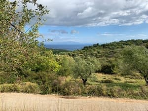 Terrain of landscape with sea view of land for sale Ithaca Greece Perachori