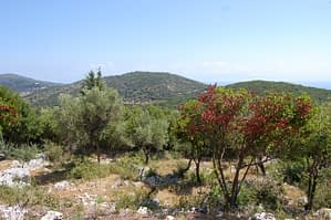 Landscape and terrain of property for sale in Ithaca Greece Vathi