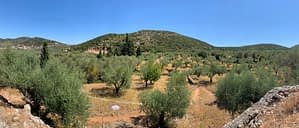 Landscape of terrain of land for sale in Ithaca Greece, Vathi