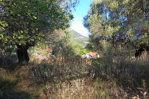 Terraced landscape and view of land for sale in Ithaca Greece, Stavros