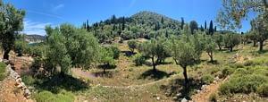 Terrain of land for sale on Ithaca Greece, Vathi