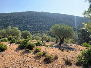 Landscape and terrain of land for sale Ithaca Greece, Stavros