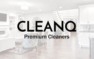CLEANQ Website